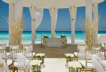 Dreamy Venues: ​Beaches, Barns and Banquets, Oh My! / Beautiful wedding venues  / by The Bride's Maids Shop