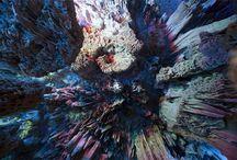 emotional landscapes / by Angela (Jinselli) Glaubitz