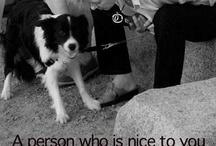 Dog sayings / by Trish Anna