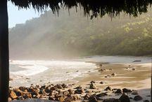 Paradise... / by Lela Bishop