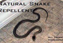 Snake repellant / by Jackie Wilson