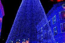 Christmas Lights Tour / http://christmaslightstour.blogspot.com/ / by Angela Hobbs