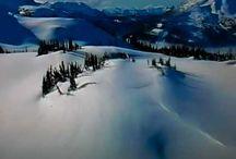2010 Winter Olympics.. Vancouver / by lynn M