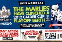 2012 Calder Cup Playoffs / by Toronto Marlies