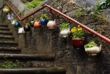 How does your garden grow? / by Lisa Wertzbaugher