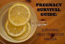 PREGNANCY SURVIVAL! / by Lana Fritsch