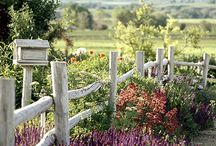 Fences, Gates, Arbors, Etc. / by Deb J