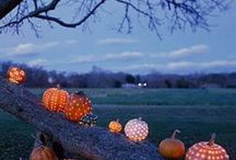 Fall Holiday Decorations / by Janelle Vano