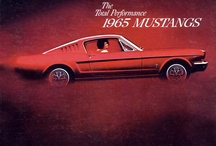 Stangs & Other Wheels / Mustangs / by Terry Molinari