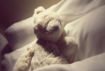 Teddy's World / The life and times of Teddy - A photographic memoir  / by Molly Moore