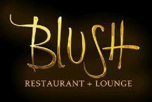 Santa Barbara Rehearsal Dinners / Santa Barbara Rehearsal Dinners photos from BlushSB.com / by Blush Restaurant + Lounge