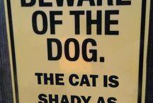 Funny / by Katherine Drury Mott