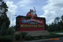 Fun Things To Do At Disney World / by On the Go in MCO