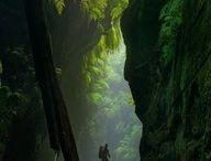 Backpacking Australia / by Belinda Squire