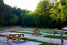 Camping in the Smoky Mountains / by Visit Gatlinburg