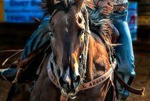 Horses / by Geanie Mulder