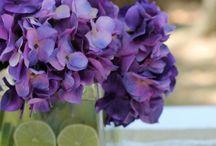 Green & Purple wedding / by Karen Cruse