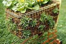 Garden Junk / by Joan Bell