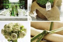 excess wedding  / by Windy Mayes Sibbersen