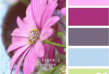 color inspired projects / by Karen Haberstich Meadows