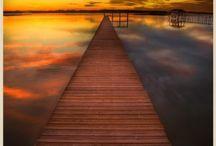 Florida / by Katie Sidorowicz