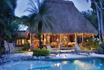 Vista Travel / American Express recommends.... / by VISTA TRAVEL