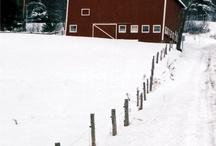 Barns / by Brenda Shinn