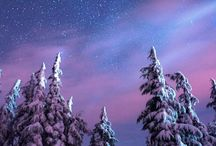 Let it snow. / by judi