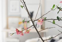 ICHI flowers / by ICHI Sushi