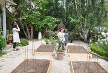 potager and backyard ideas / by Shani Roberts