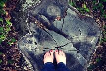 go outside  / by Carrie Shryock (1canoe2)