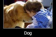 Puppy Love / by Megan Durbin