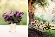 Wedding / by Nicole Bruce