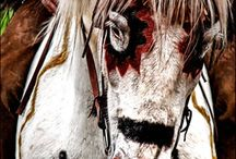 North American Native indian / by tom LIIKANE