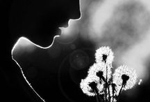 BW photography / by yustisea satyalim