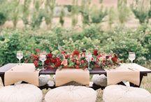 Vineyard Images / by Angelini Wine