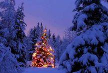 Christmas / by Sharon Sharon