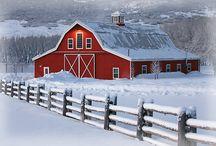 Snow, beautiful snow ! / by Gwyn Whelband