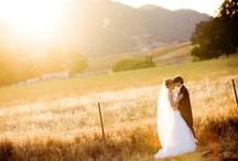 Dream Wedding / by Christy Steckline