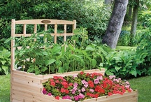gardening and raised beds / by Karen Talaber-Clement