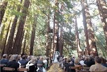 Wedding Ideas / by Meg Waldron