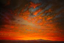 New Mexico Dreaming / by Emily Gleasure