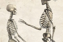 Medical Oddities / any unusual interpretation of medicine and science- research for medical illustrations / by Jill Mash