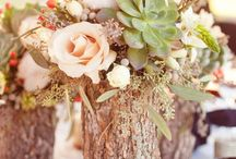 Sarah K Oct 2014 / by Whimsical Floral Design - Charlottesville Wedding Florist