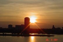 Tampa Florida / by Pam Moore | Social Media