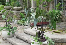 Home and Garden / by BDN Maine