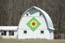 Barn Quilts / by Quilted Cottage
