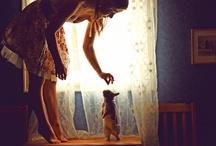 owl's corner / by Brittany Barnard