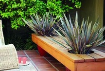 diy outdoor projects / by Kevin Kownacki