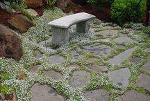 Garden / by Elia Lizcano